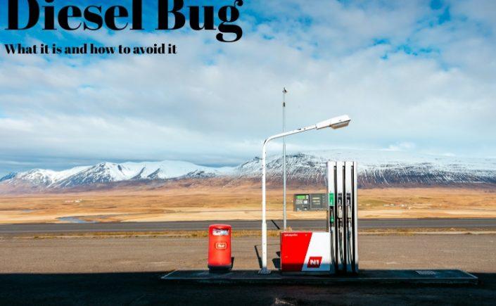 Diesel Bug babble.uk.com. Image shows a fuel pump by the road side dispensing diesel fuel.